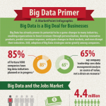 Big Data Primer Infographic
