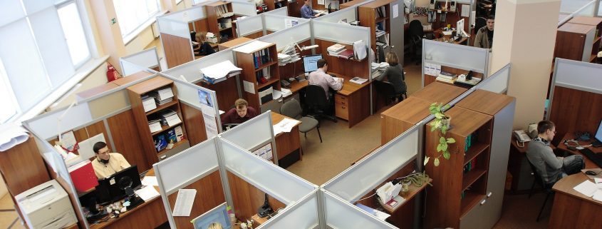 cubicle workers in a 40-hour environment